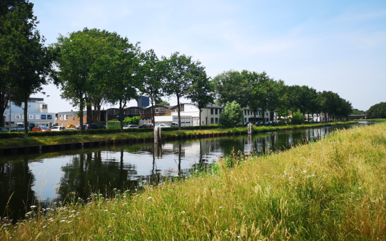 Dock Zuid – sustainable entrepreneurship